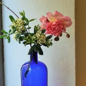 fleurs flashy
