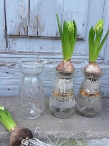 vases x3 22