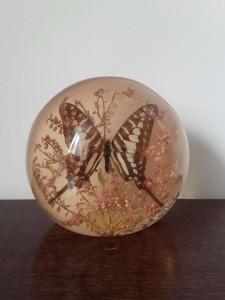 inclusion papillon résine vintage